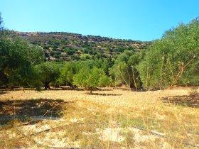 Jeep-vakantie-Kreta-zuid-europa