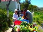 Kookvakanties-op-Kreta