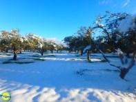 Wandelen op Kreta in de Winter