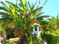 Vakantie op Kreta (4)