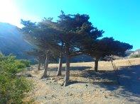 Begin augustus op Kreta Vakantie (2)