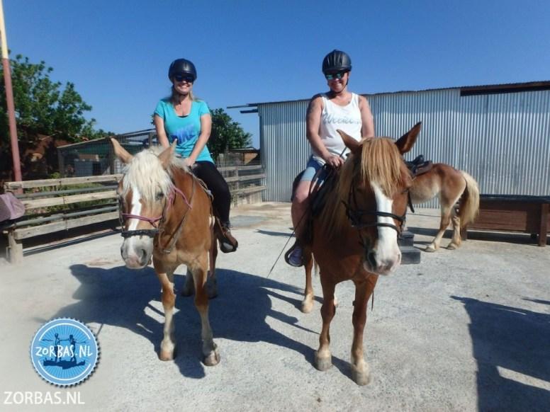 Actief bezig zijn paardrijden