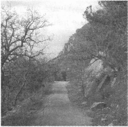 Старая батилиманская дорога