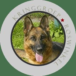 Duitse Herder Kringgroep Roswinkel