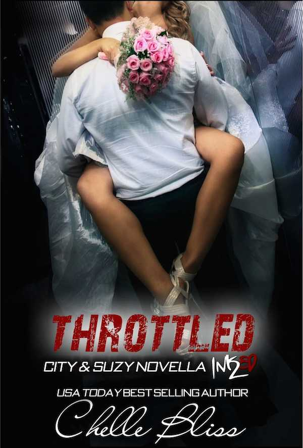 RELEASE BLITZ & GIVEAWAY: THROTTLED by Chelle Bliss