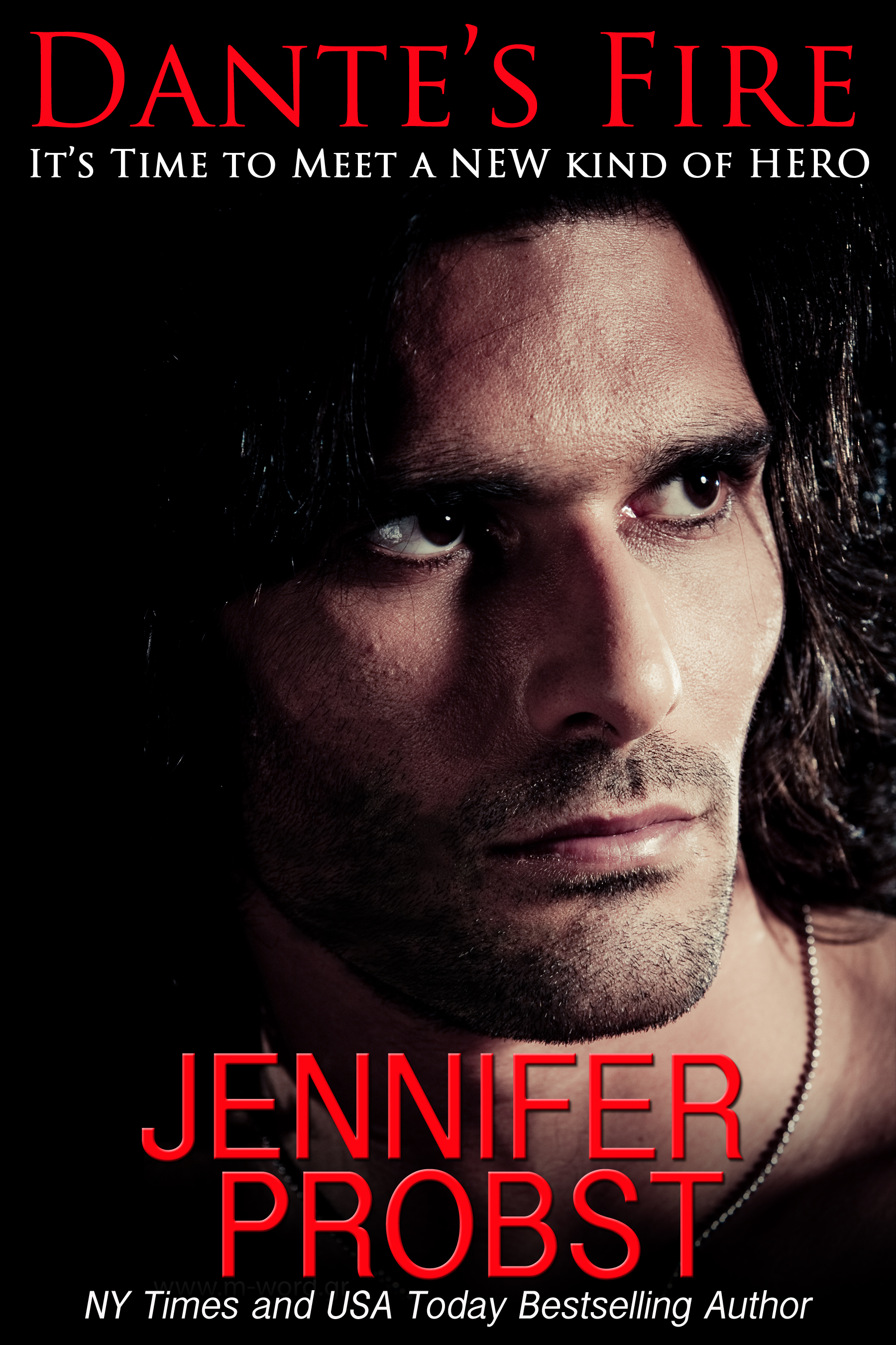 BLOG TOUR, GIVEAWAY & REVIEW: DANTE'S FIRE by Jennifer Probst