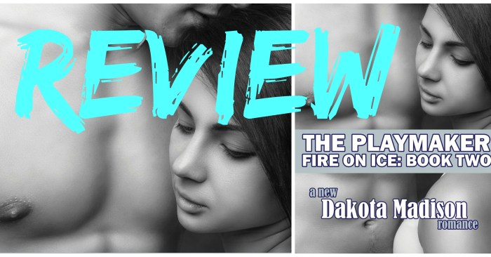 REVIEW • SULTAN: THE PLAYMAKER by Dakota Madison