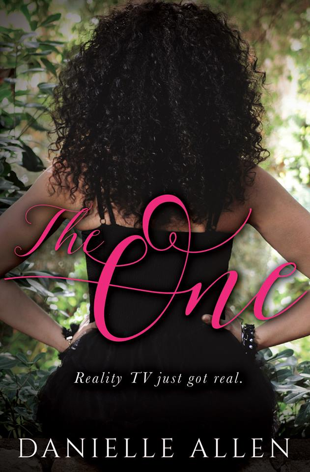 Release Week BLITZ #EXCERPT & #GIVEAWAY: The One by Danielle Allen