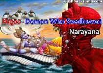 nigas - demon who swallowed narayana - krishna kutumb