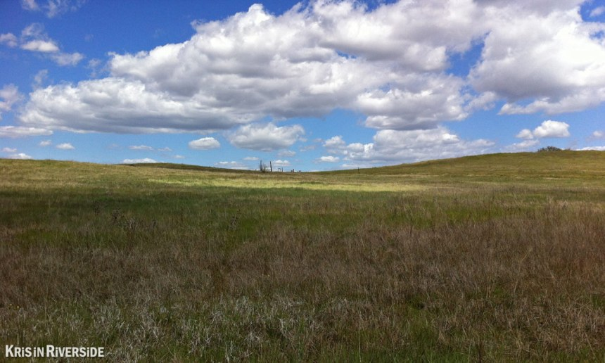 Santa Rosa Plateau - 2012