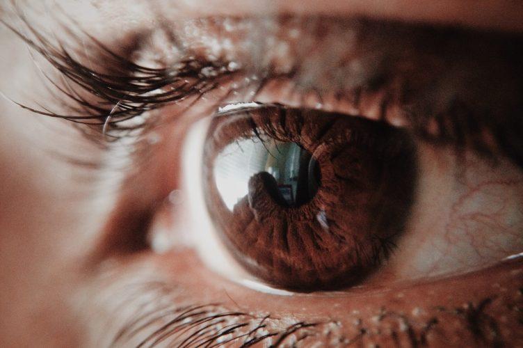brown-human-eye-946727