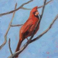 Cardinal - small daily oil painting