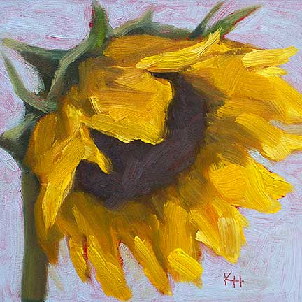 Sunflower #4 – Day 4