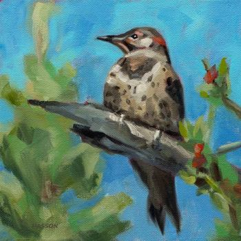 Northern Flicker bird oil painting by Krista Hasson
