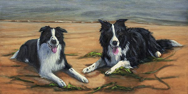 Update 4 Border Collies commission Oil WIP