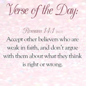 Verse of the Day – Romans 14:1