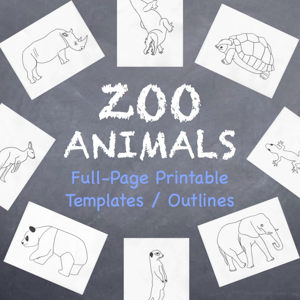 My Animals Coloring Book