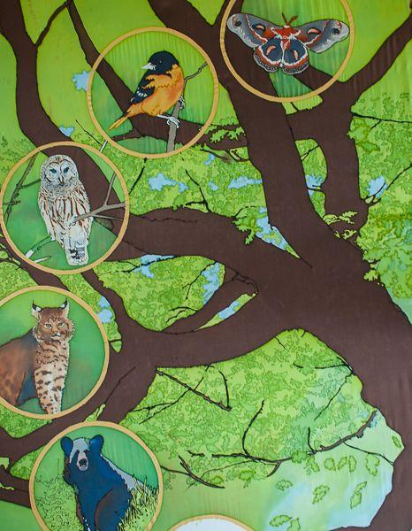 Oak-Forest-Detail