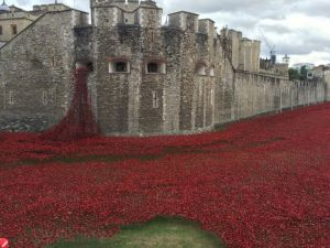 Poppy Installation at the Tower of London, August 10th, 2014.