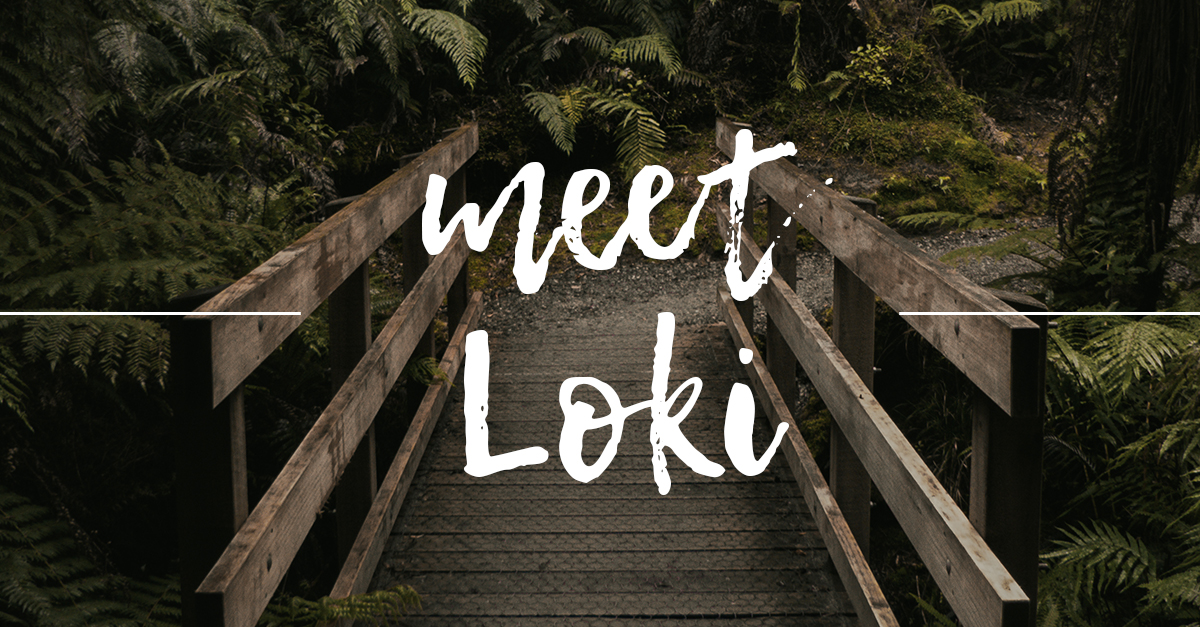 You are currently viewing Writing Wednesday: Meet Loki