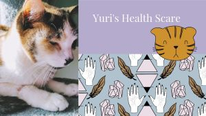 Read more about the article Yuri's Health Scare