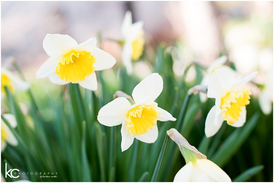 2014-04-05_0030