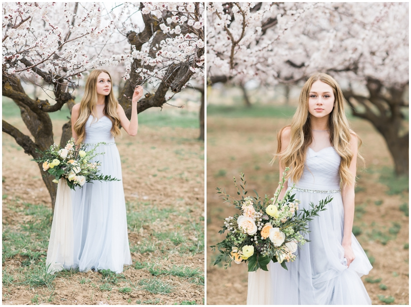 spring bridals, utah photographer, wedding photography, apricot blossoms, orchard in bloom, spring bridals, www.kristinacurtisphotography.com