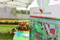 community-event-salisbury-in-bloom-4
