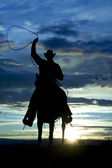 depositphotos_13316676-stock-photo-cowboy-on-horse-facing-roping