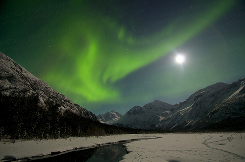 Colin Tyler Northern Lights with Moonshine