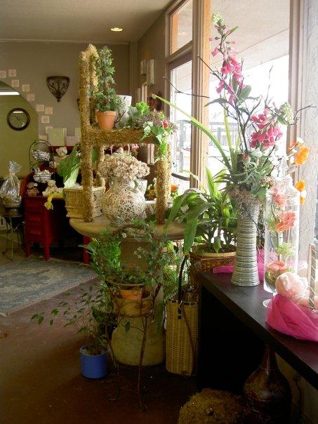 Melrose Flowers 12-3-08