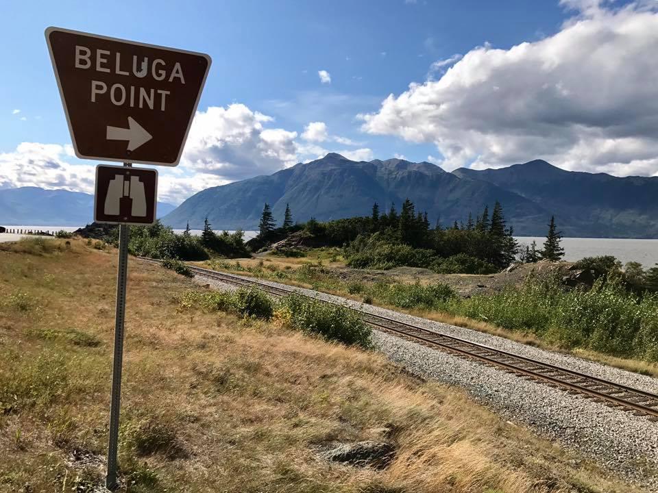 Beluga Point Sign
