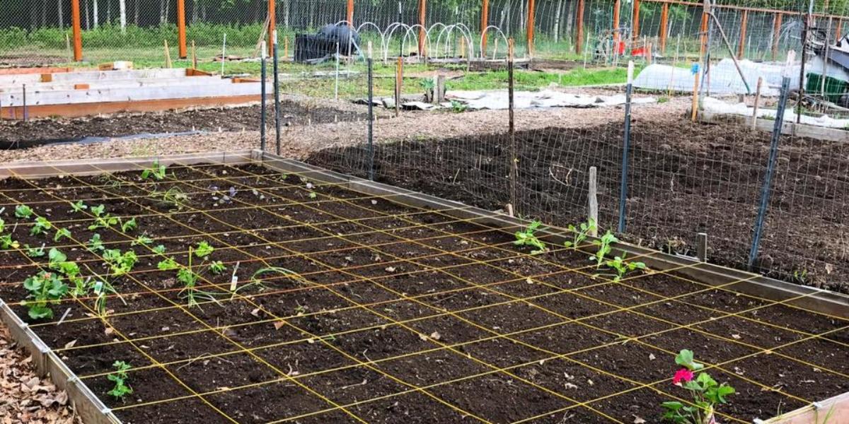Community Garden Grid