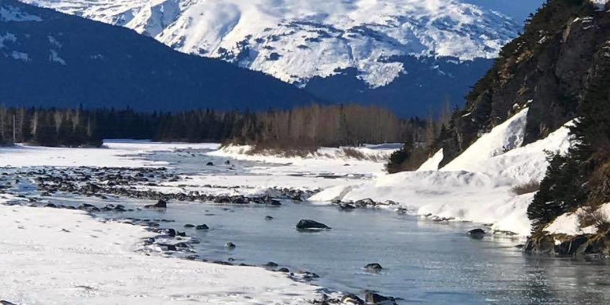 Road to Portage, Alaska