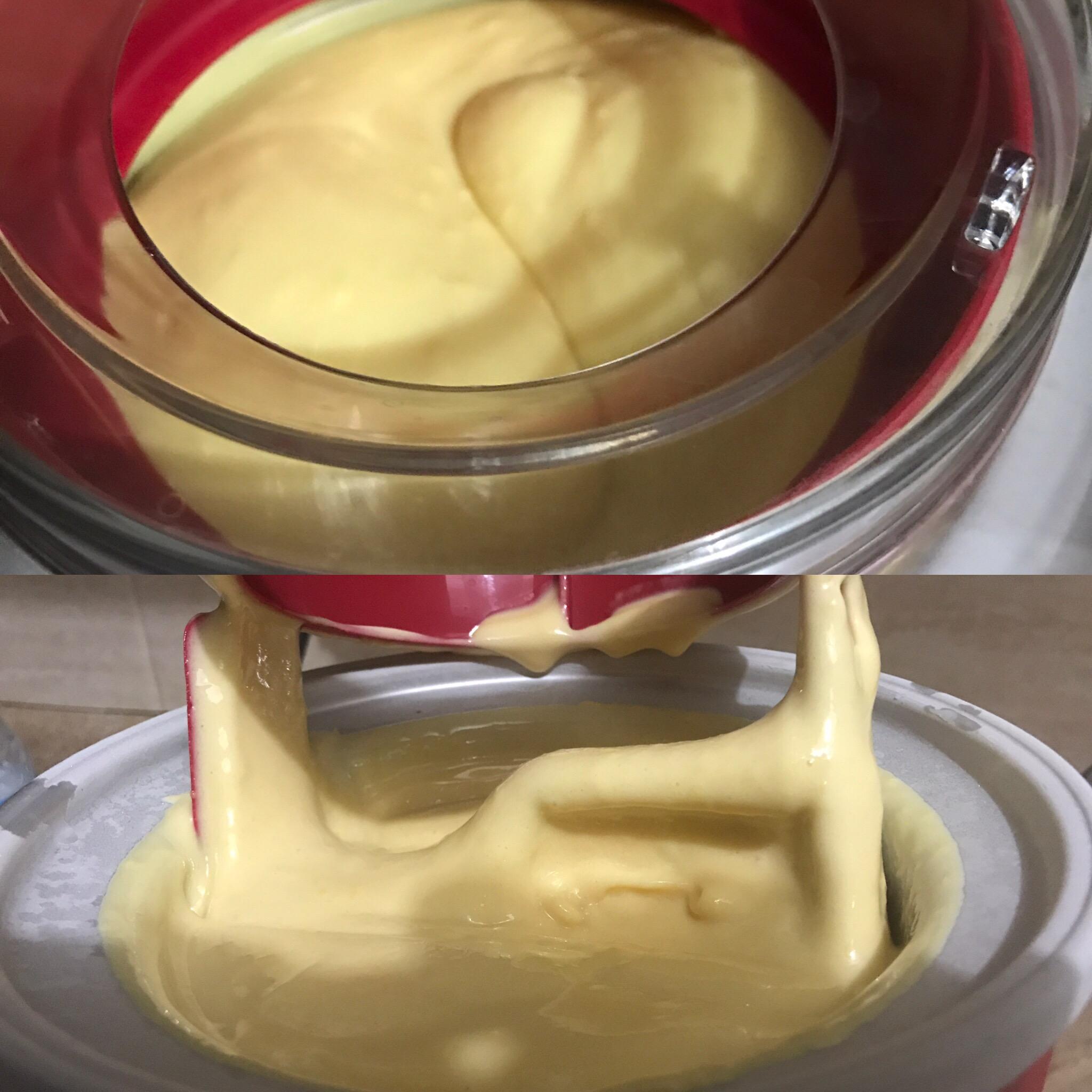 Amazing Cheese Ice Cream