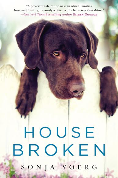 Dear Carolina, Women's fiction, House Broken, Sonja Yoerg