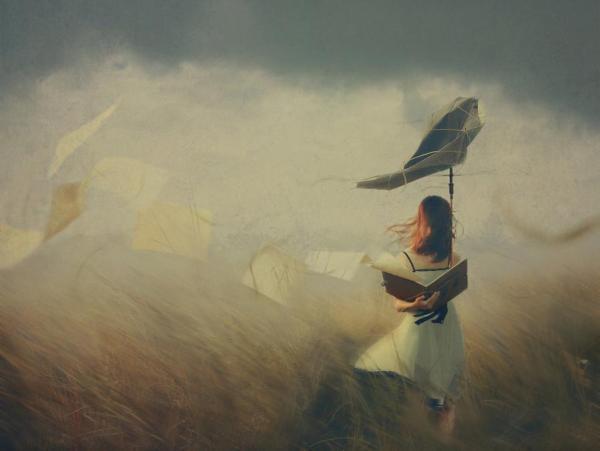 Fotó: Hoang Hiep Nguyen - Storm