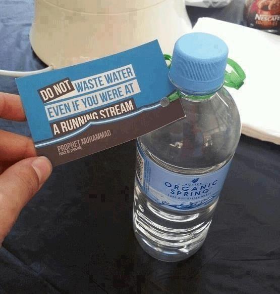 Organisch - water