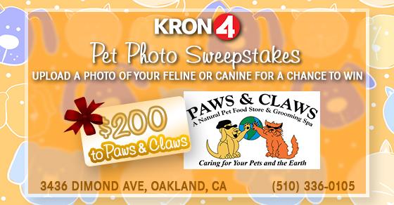 560x292 Facebook Pet Photo Contest_1560536324417.jpg.jpg