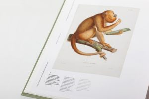 kronecker-wallis-humboldt-illustrations-book-14