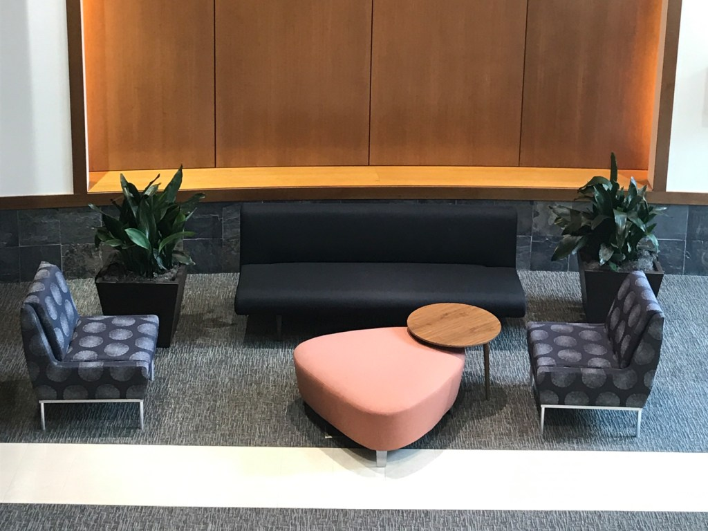 Tropical plants in dark containers with mondernist furniture