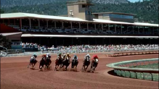 New Mexico racehorse_116760