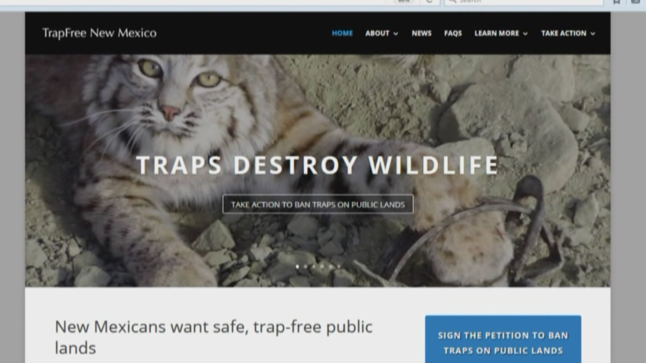 nm-wildlife-traps_529746