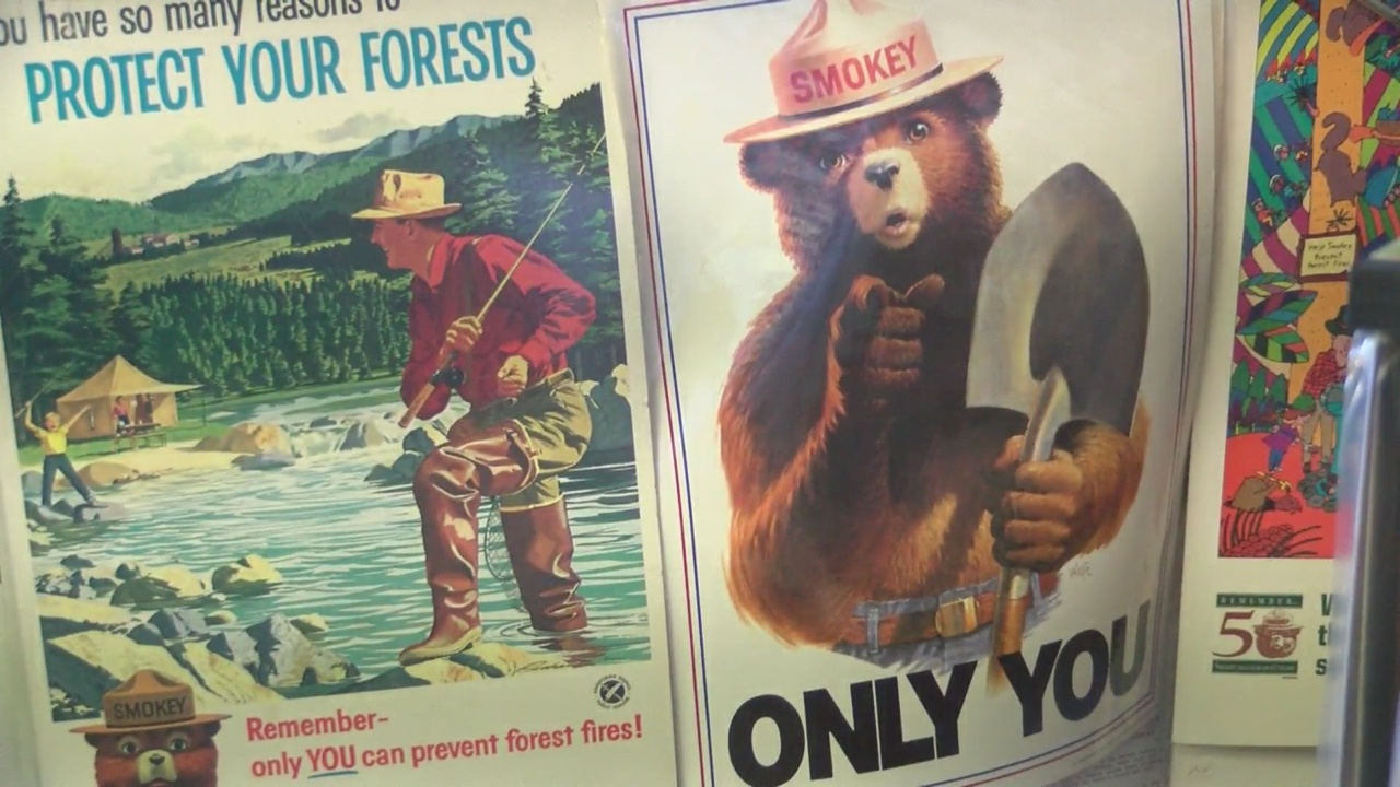 Smokey Bear becomes Ad Council's most valuable icon of the year