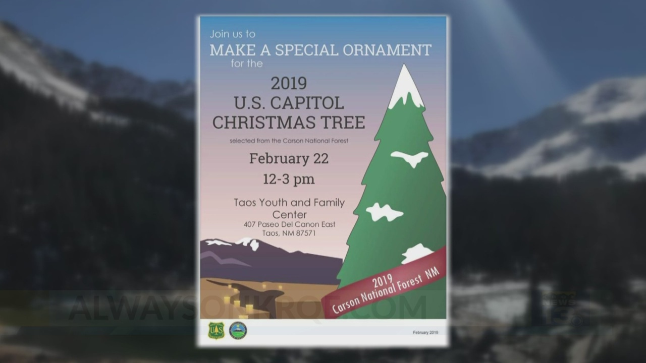National Christmas Tree 2019.2019 Capitol Christmas Tree Will Come From New Mexico