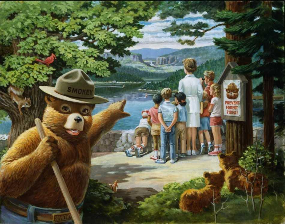 smokey bear_1550174703253.jpg.jpg