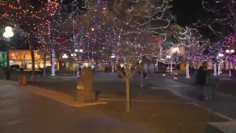 city of santa fe changes annual tree