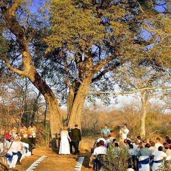 Lukimbi Lodge Bush Wedding