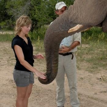Manyatta Rock Camp Elephant Back Safari Interaction