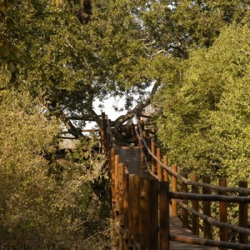 Serondella Game Lodge Walkway